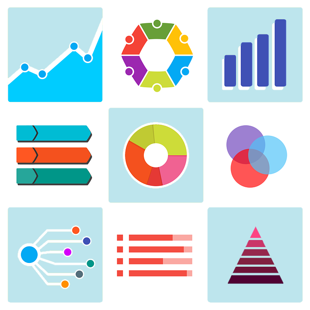 Business Intelligence in Government Visualizations